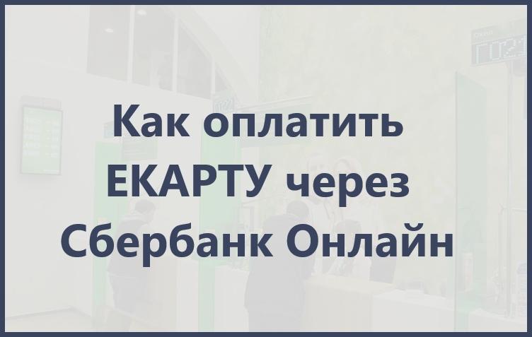 презентация оплаты ЕКАРТы